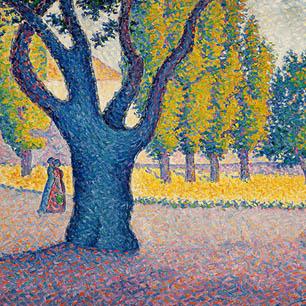 Nature Canvas Art Prints