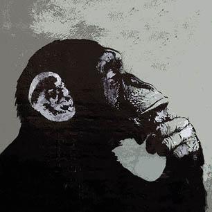 Urban Street Art Canvas Prints