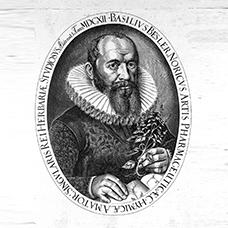 Besler Basilius