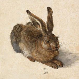 Albrecht Durer Canvas Art Prints