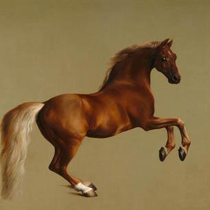 George Stubbs Canvas Art Prints