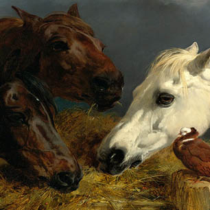 J.F. Herring Senior Canvas Art Prints