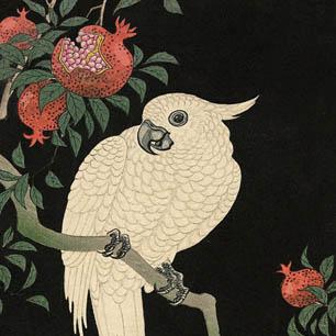 Ohara Koson Canvas Art Prints